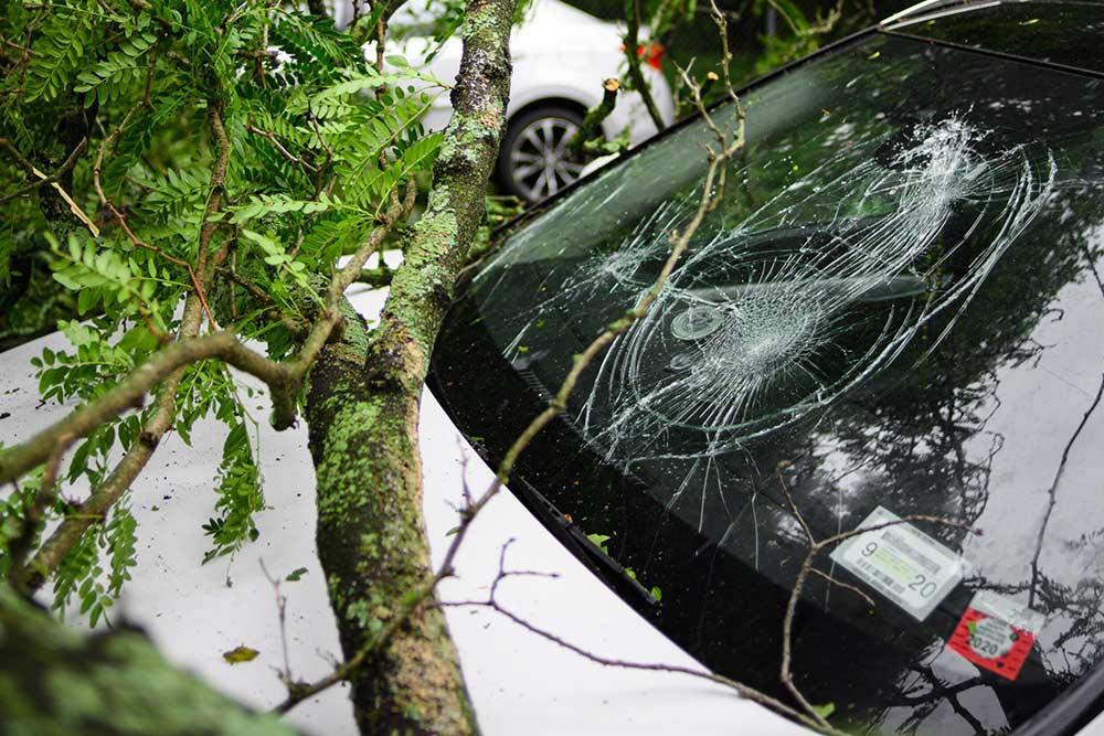 berribide seguro vehiculo comercial